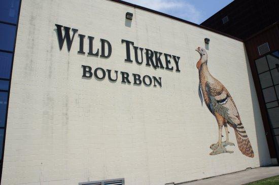 wild-turkey-tour.jpg